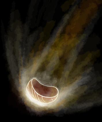steak_burning.png